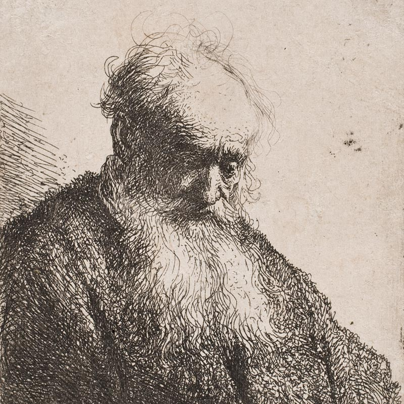 Old Man with a Flowing Beard